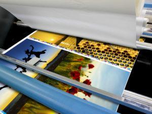 Premium-Fotodrucke - Großformat